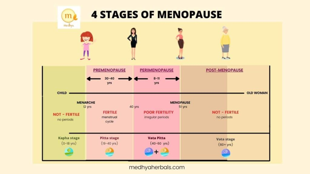 4 Stages of Menopause-min
