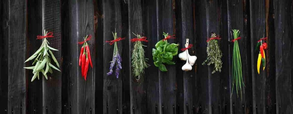 herbs and spices-ayurvedic health plan-min