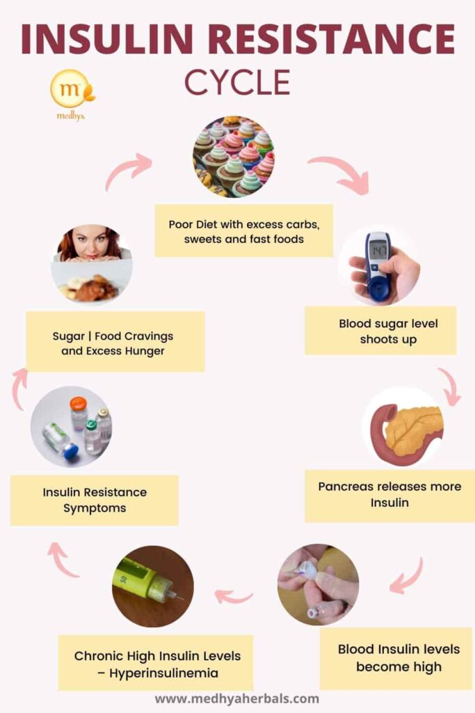 Insulin resistance cycle-min