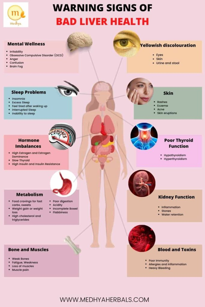 Warning Signs of Bad Liver Health-Unhealthy Liver-min
