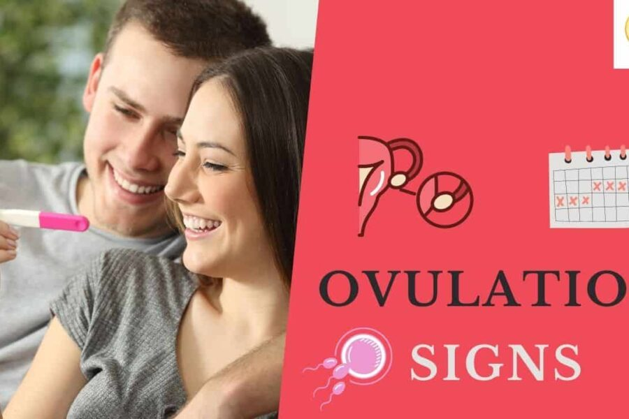 8 Ovulation Signs & Symptoms That You Should Not Miss