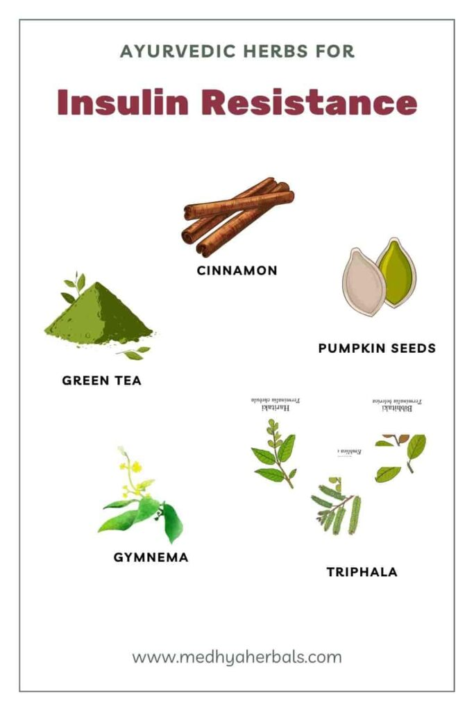 Ayurvedic Herbs for Insulin Resistance and Weight Loss