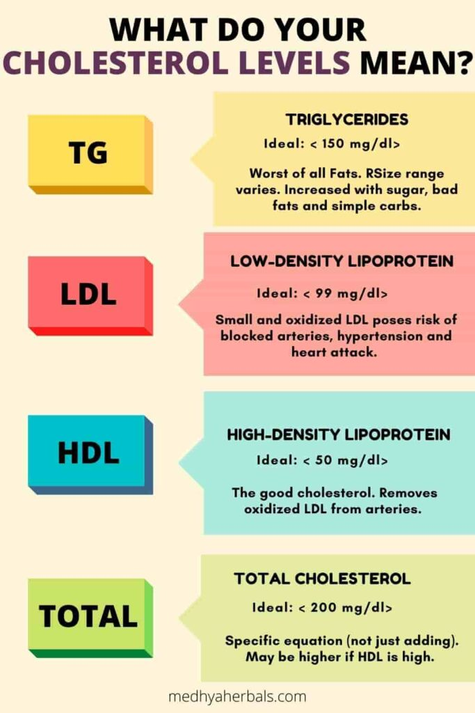 Cholesterol Levels Chart and Diagnosis-min